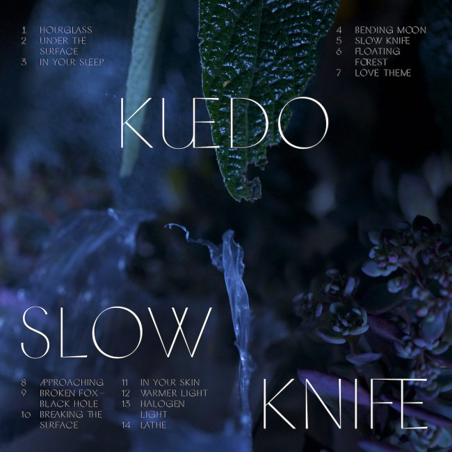 kuedo_slowknife
